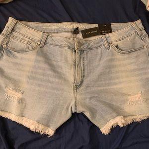 Lane Bryant Light Blue Distressed Jean Shorts